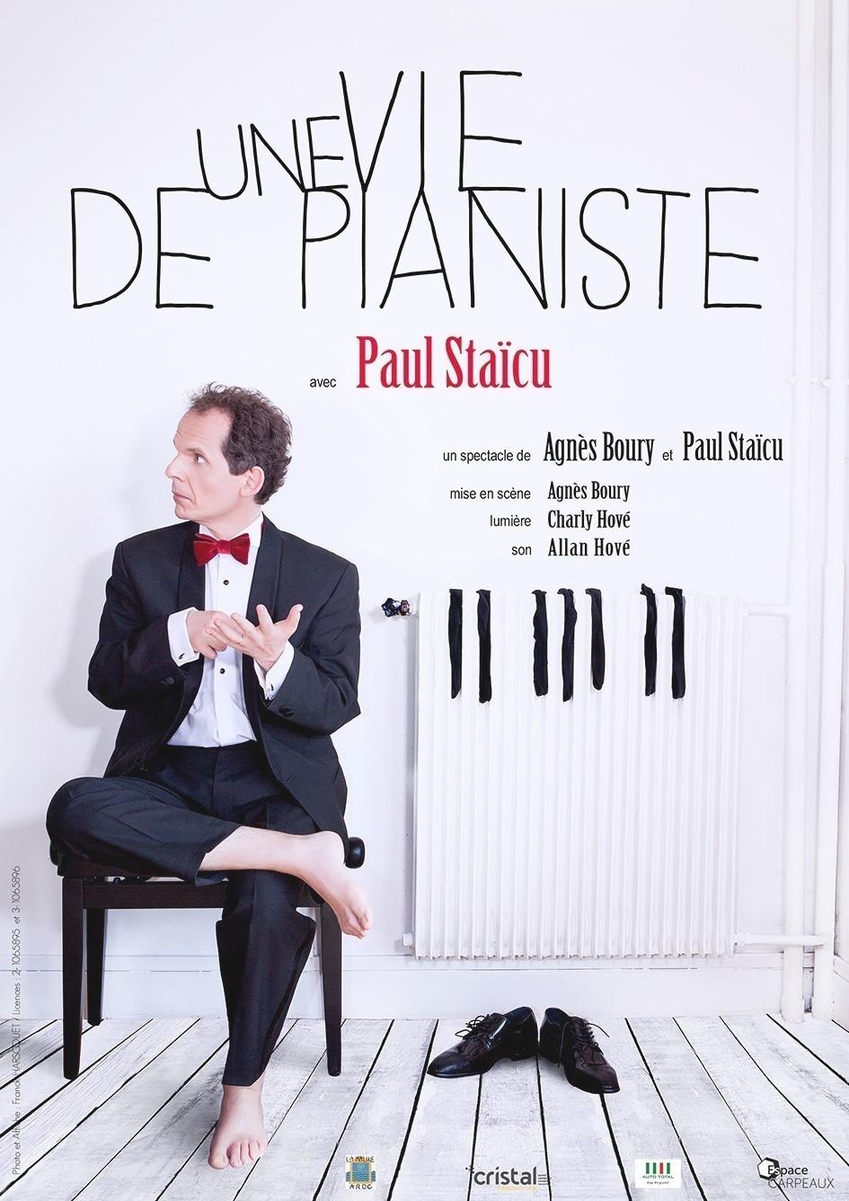 Une vie de pianiste - Paul Staicu